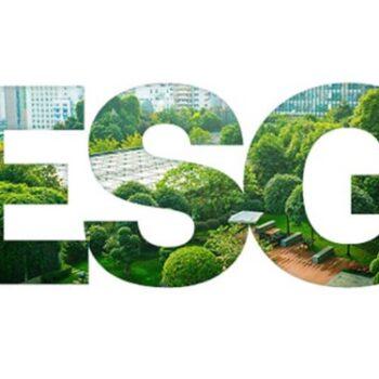 Environment Social Governance Guide-min